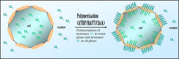Polymerization of monomer M1 in water phase and monomer M2 in oil phase